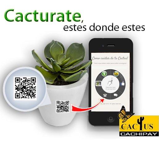 Cactus cachipay cacturate blog todos los derechos reservados - Informacion sobre los cactus ...